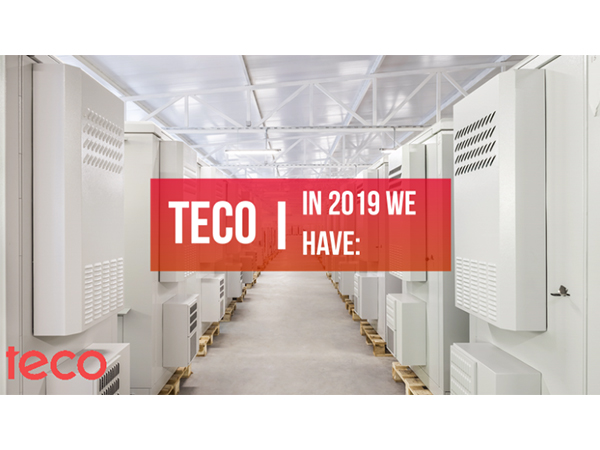 2019 year with TECO team in review