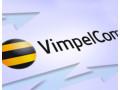 VimpelCom. Building a telecommunication network